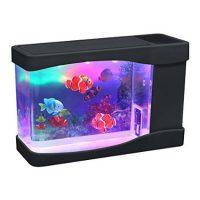 Hồ cá nhân tạo để bàn desktop aquarium clownfish