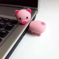 USB 8GB Heo