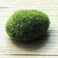 Rêu tiểu cảnh bonsai nhân tạo hình viên đá
