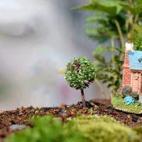 Cây bonsai tròn mini style 5 phụ kiện trang trí tiểu cảnh terrarium