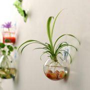 Bể cá cảnh treo tường mini tank wall terrarium aquarium 10 cm