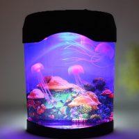 Hồ sứa nhân tạo để bàn desktop aquarium jellyfish clownfish