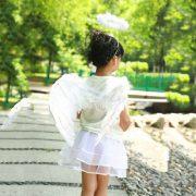 Đôi cánh thiên thần lông vũ hóa trang Halloween