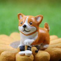 Chú chó siêu cute PHỤ KIỆN TRANG TRÍ TIỂU CẢNH TERRARIUM