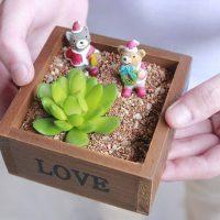 Khay gỗ vuông Love Trồng hoa sen đá cây cảnh trang trí