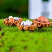 Tổ gà 3 quả trứngmini PHỤ KIỆN TRANG TRÍ TIỂU CẢNH TERRARIUM