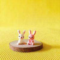 Cặp thỏ cute bunny rabbit mini PHỤ KIỆN TRANG TRÍ TIỂU CẢNH TERRARIUM