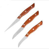 Bộ 3 Dao inox gọt trái cây lưỡi dao thép không gỉ cán gỗ đa năng