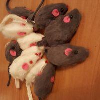 Con chuột nhắt lông bông đồ chơi trêu chọc thú cưng