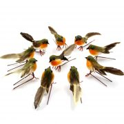 Chim sẻ robin mô phỏng sống động trang trí nhà cửa lễ hội tiệc