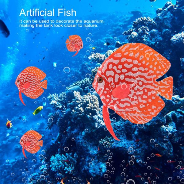 Cá dĩa trang trí bể cá hiệu ứng ánh sáng UV tuyệt đẹp