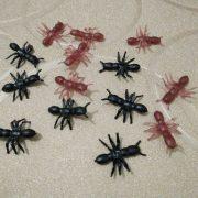 5 con kiến mô phỏng 3d giả như thật