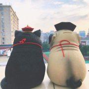 Ống heo giữ tiền tiết kiệm Nàng Chó Cách Cách