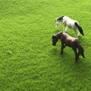 Thảm cỏ xanh mượt tiểu cảnh bonsai phụ kiện trang trí Terrarium