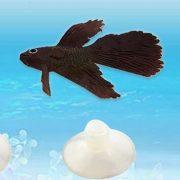 Cá xiêm betta trang trí bể cá độc đáo